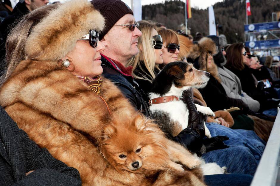 SWITZERLAND. St Moritz. St Moritz polo world cup on snow. From 'Luxury'. 2011.