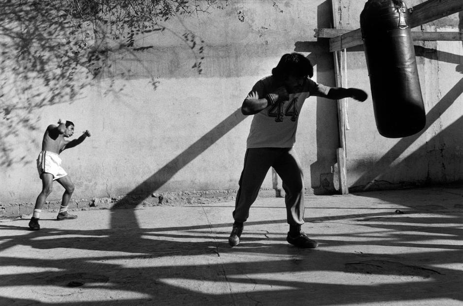 Abbas Mexico boxers